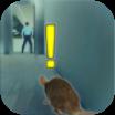 Rat Simulator