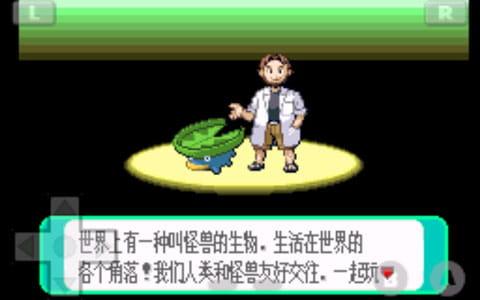 口袋妖怪 绿宝石493版 v1.0截图