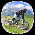 山地冠军 完整版 Downhill Champion v1.5.4