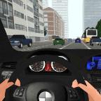 汽车驾驶 Car in Driving v