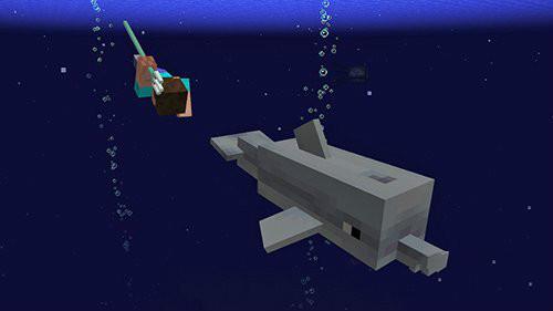 我的世界1.14水域更新内容 夜空中的怪物详解