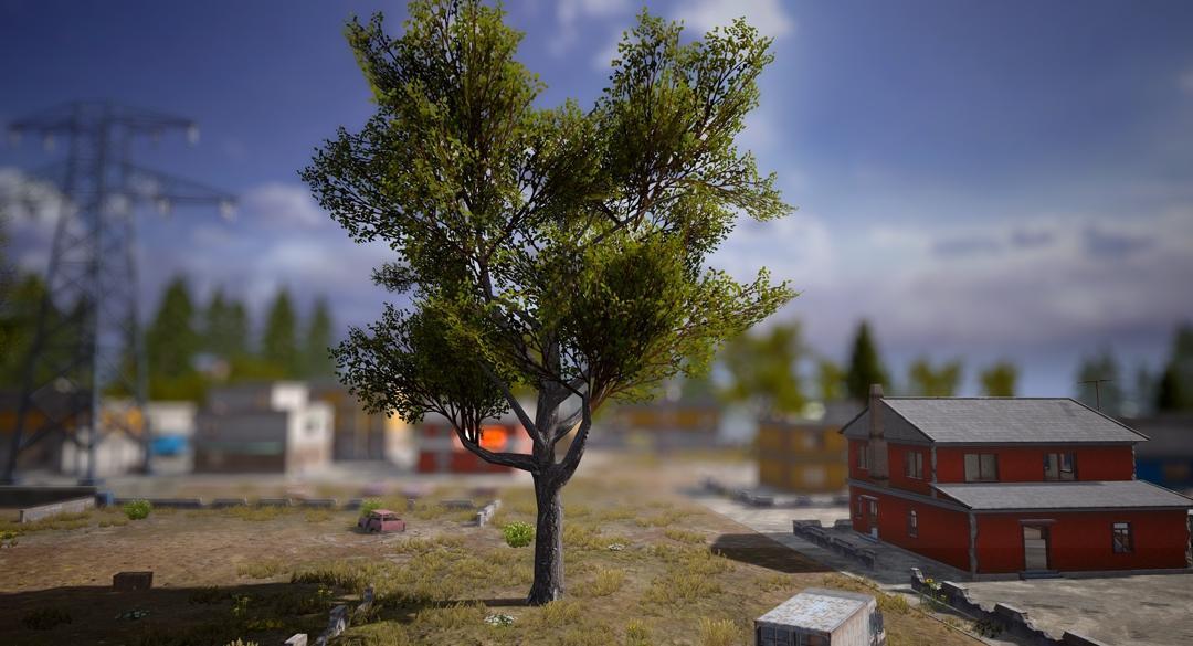 小米枪战海岛地图更新优化 树木种类、水域与地形增多