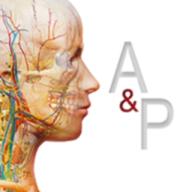 解剖学和生理学