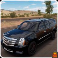 美国汽车模拟器驾驶执照