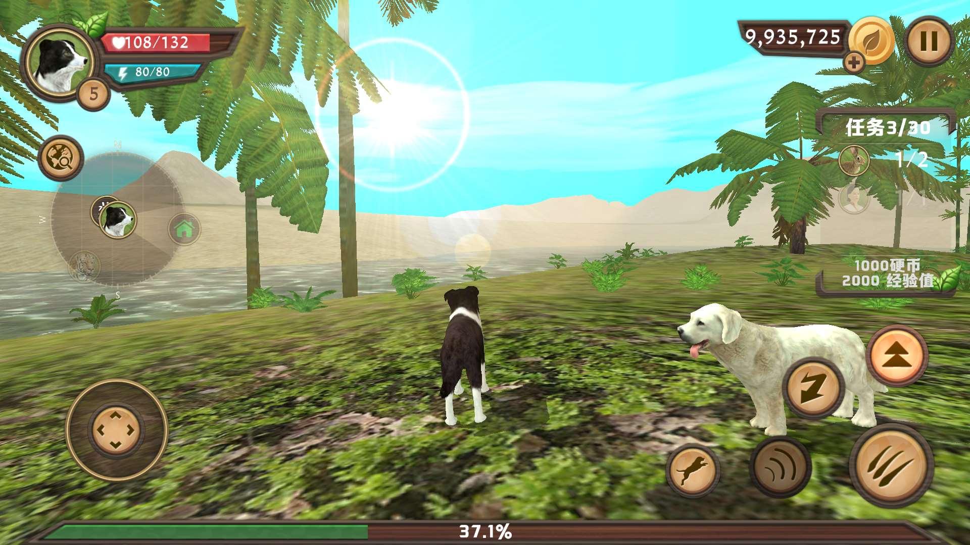 模拟狗子生存 v8.6截图