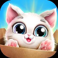 口袋猫咪 v1.0.0