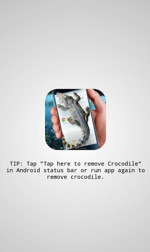 鳄鱼在屏上爬官方APP下载 v1.1截图