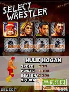狂热摔跤图